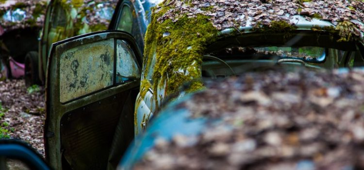 Cars in Decay